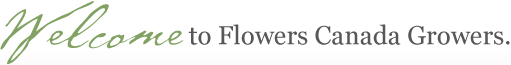 Welcome to Flowers Canada Growers