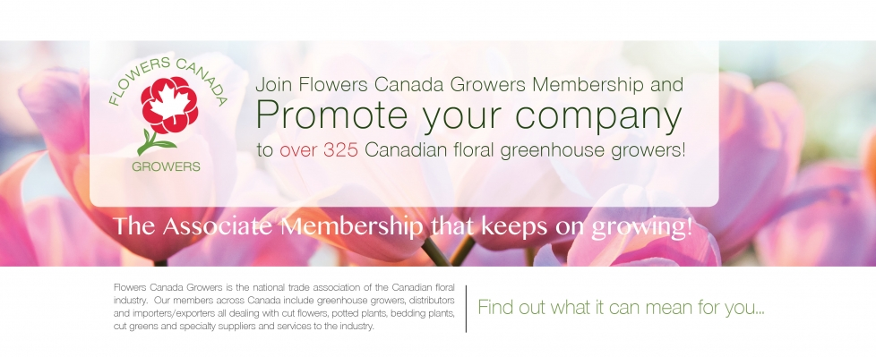 Flowers Canada Growers   Greenhouse Growers and Industry